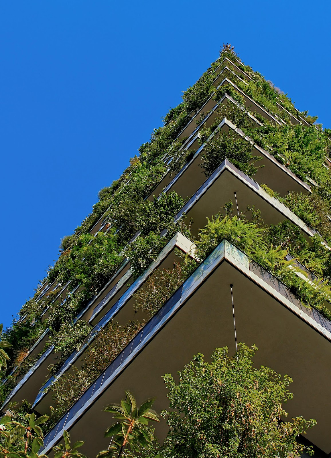 What is the difference between Sustainability and CSR?